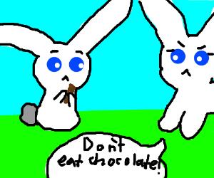 Bunny eats chocolate; Mom gets mad.