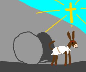 Jesus donkey escapes tomb