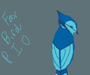 Favourite Bird (Pass It On)