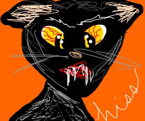 Demon cat is watching you