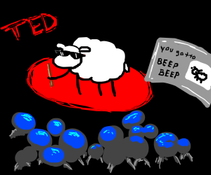 beep beep sheep ted talk!