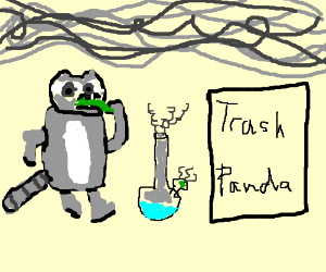 chill Raccoon eating herbs