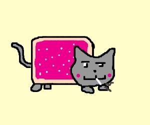 A smoking Nyan Cat