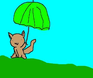 cat holding an umbrella