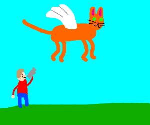 Man videos a cat flying