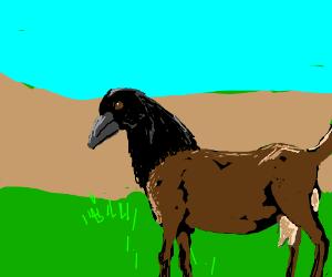 Goatbird