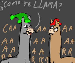 Llama asks what your name is in Spanish