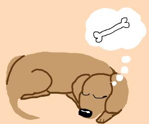 puppy dreams a bone