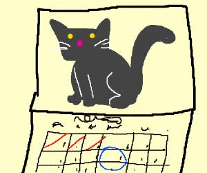 Kitty Calanders