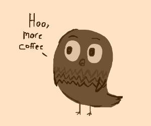 A wide awake brown owl