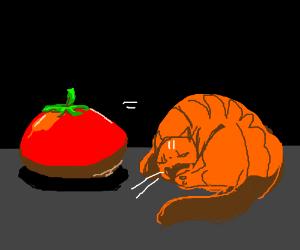 Tomato = Cat