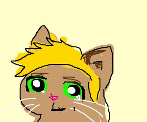 Jazza cat with anime eyes