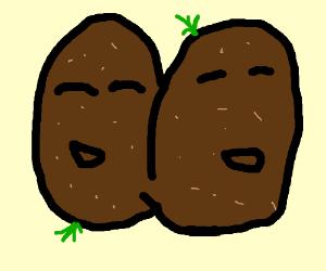 Good Siamese Potatoe are happy
