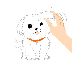 Petting the pupper