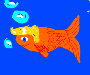 Donald Trump is a Chinese Fish.