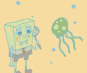 Spongebob and a jellyfish