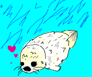 baby harp seal drawing by undyrus fangirl