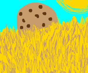Giant Cookie in Field of Hay