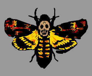The moth from Silence of the Lambs
