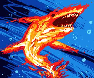 Dope AF fire shark