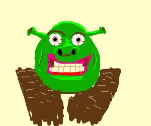 Schizophrenic Shrek