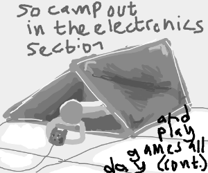 so camp out in the electronics section (cont)