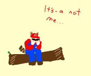 "Sad Raccoon Mario says ""It's-a not me!"""