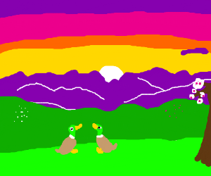 Two duck sit and watch the sunset