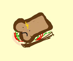 Ye a sandwich Harry