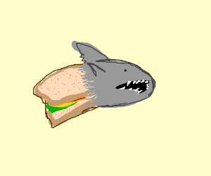 Half Sandwich Half Shark