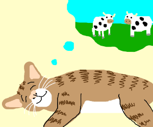 cat dreaming about cows