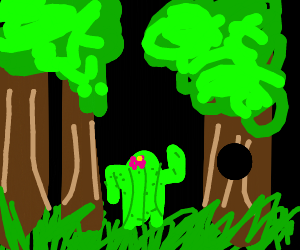 A cactus in the forest