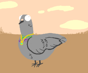 Pigeon with a necklace