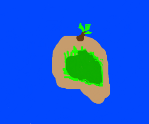 Beautiful desert island