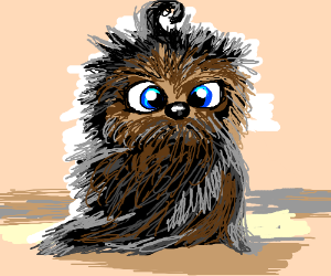 The lovechild of a wookiee and a tribble