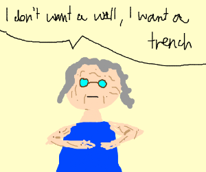 anti-trump old lady
