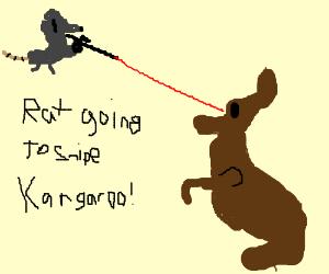 Rat is going to snipe a kangaroo