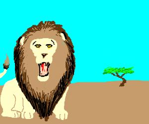 Lion speaks jibberish about manlyness