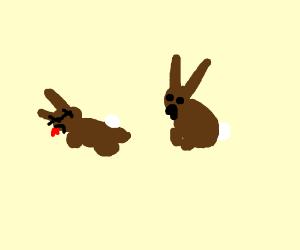 ha ha ha! watership down! dead bunnies!