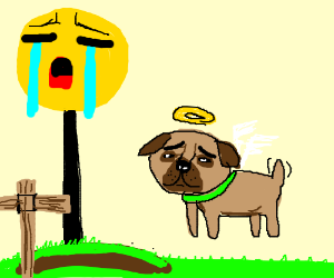 """I sad"" because ""my pug died"""