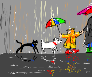A walk with the pets on a rainy day