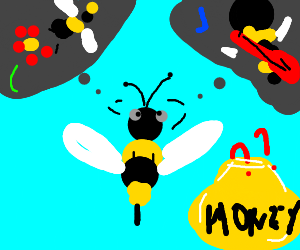 To bee or not to bee? Honey, do you know?