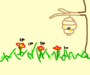 Bees pollinating for honey
