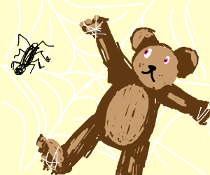 Bear Trapped in Spider Web