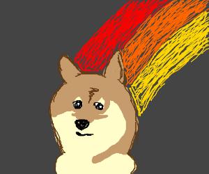 Doge with meme rainbow background