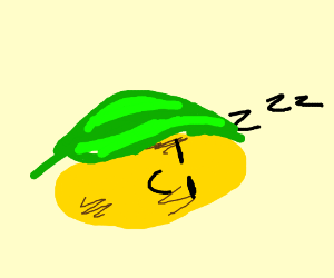 potato sleeping under leaf