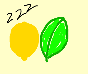 lemon sleeping with a leaf (but sfw)