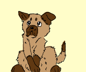 Constipated dog with bloody nose