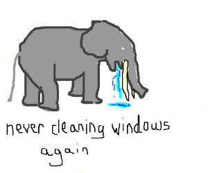 elephant coughs up Windex