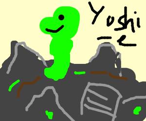 Yoshi fedish